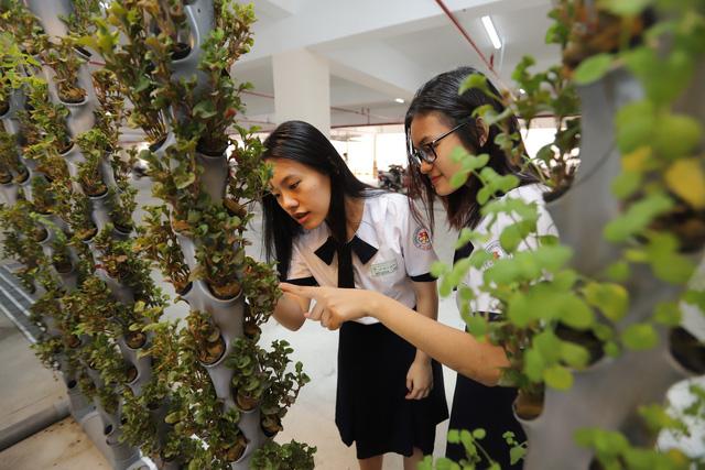 180 học sinh lớp 10 mời cha mẹ, thầy cô đầu tư kinh doanh trong trường
