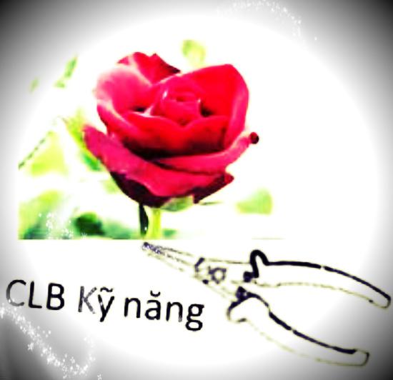 KẾ HOẠCH HOẠT ĐỘNG CLB KỸ NĂNG NĂM HỌC 2015 – 2016